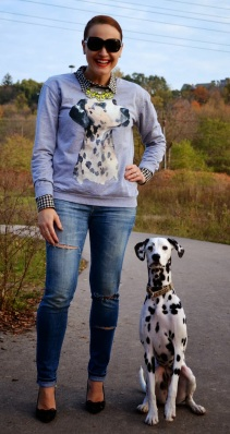 animal graphic sweater